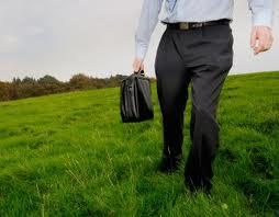 empleo verde