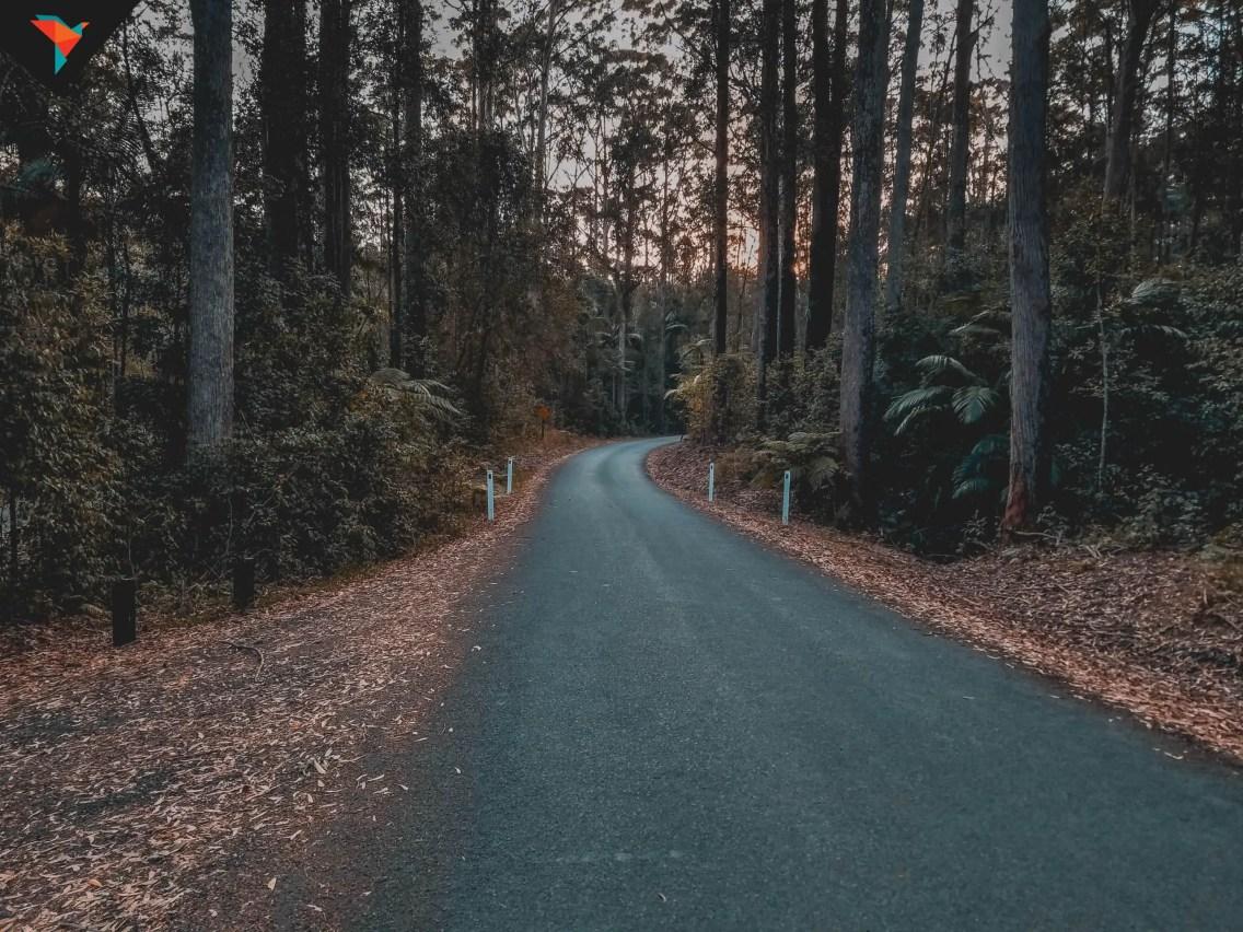El camino de regreso a casa