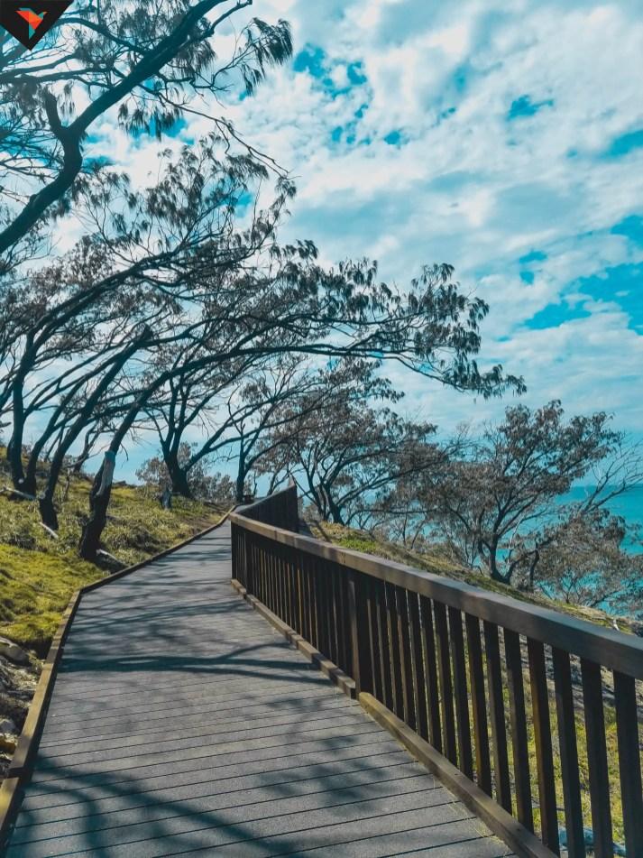 El camino que recorre la costa