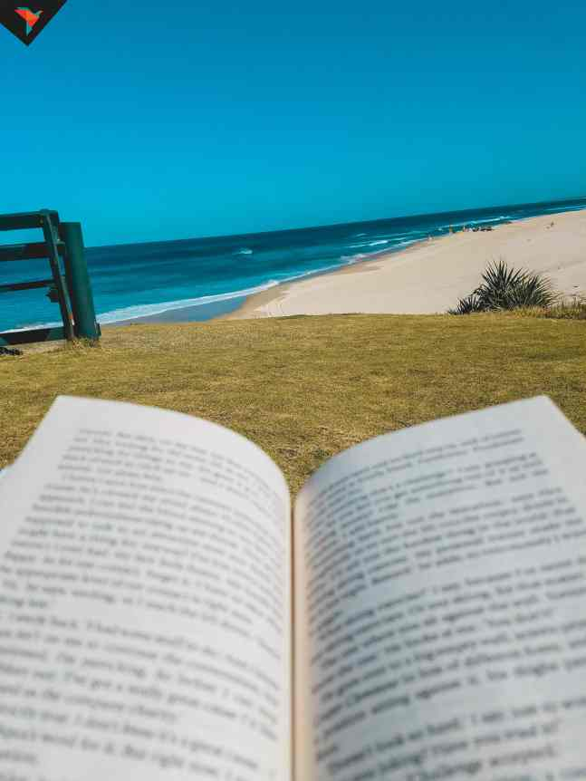 Tarde de lectura