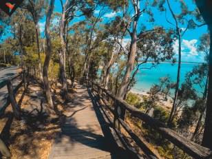 El sendero en Noosa National Park