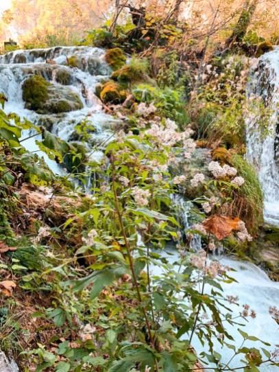 Otoño en Parque Nacional Plitvice. que ver en Plitvice