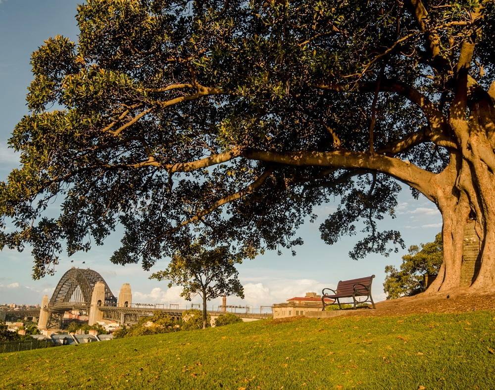 Observatory-Hill-sydney