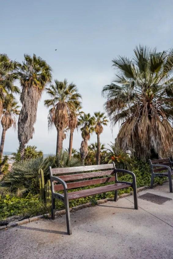 Jardins Mossèn Costa i Llobera4