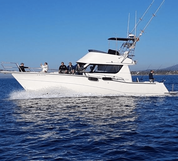 rodman-1250-fisher-puerto-jose-banus-1