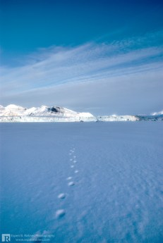 Footprints close to a glacier
