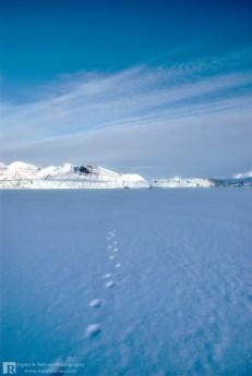 Footprints close to a glacier
