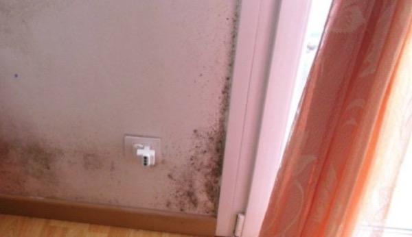 2012: bonifica dalla muffa, nuove finiture interne, installazione VMC decentralizzata PADOVA Gradi Giorno 2383 Zona Climatica E