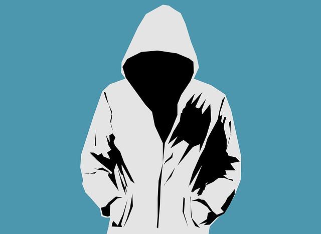 Masquer IP et anonyme sur internet