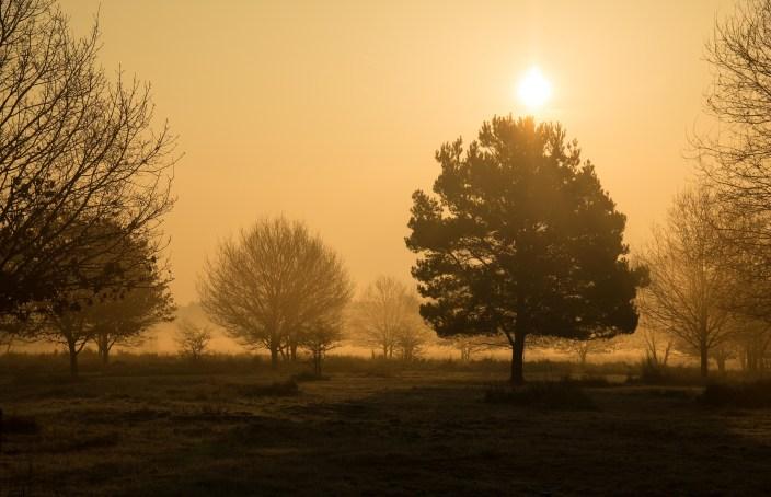 imbloc sunrise