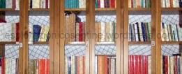 biblioteca-bellusci-frascineto