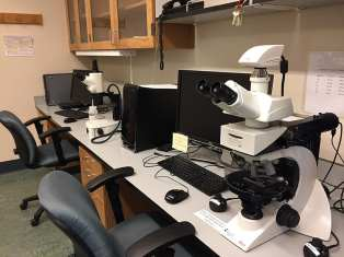 Leica petrographic microscope and binocular with camera for digital image analysis