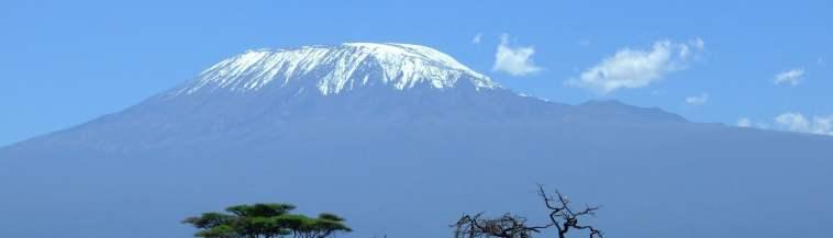 kilimanjaro img
