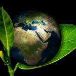 Make Your Business More Eco-Friendly