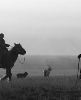 Eleveurs nomades mongols à cheval