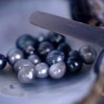 Perles d'Océanie