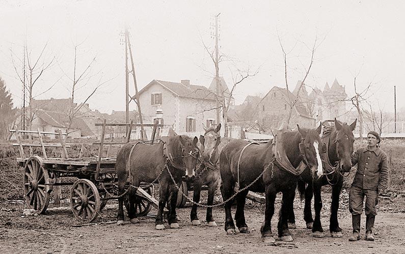 poudrerie-mauzac-attelage-chevaux