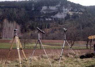 Surveillance du faucon pèlerin en Dordogne