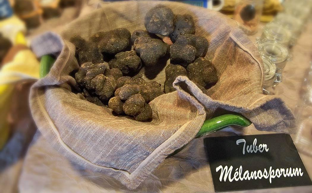 Conseils pour acheter et conserver la truffe