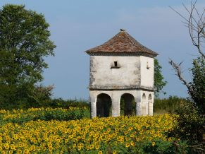 800px-Coulaures_pigeonnier_Cousse_(4)