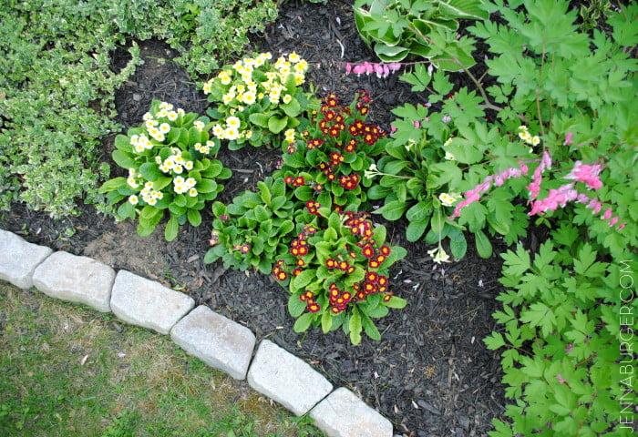 10 idées de bordures de jardin