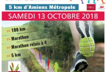 100 KM  & Marathon de la Somme