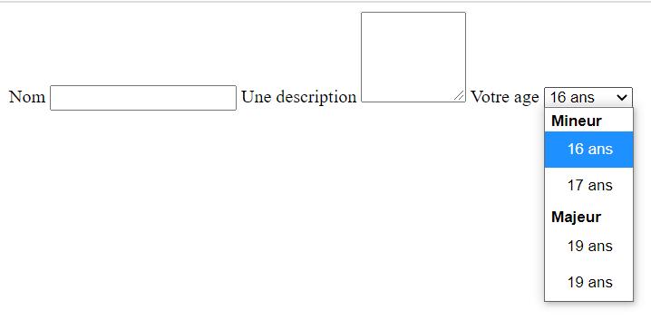 Résultat visuel d'un formulaire HTML