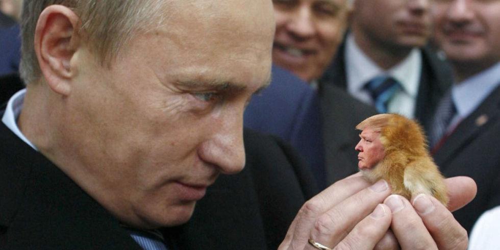 Image result for trump, putin