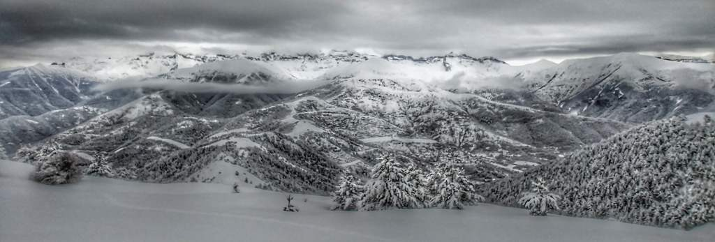 bosques nevados - esquí de travesía