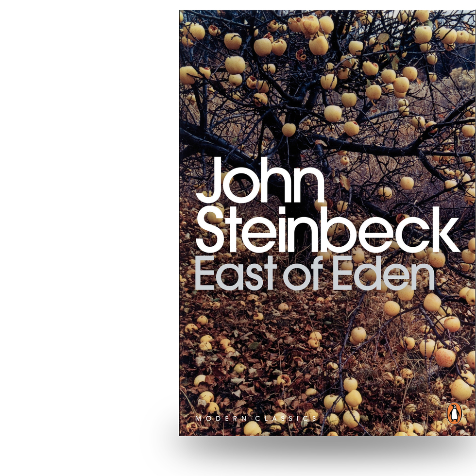 Image result for east of eden book cover tree