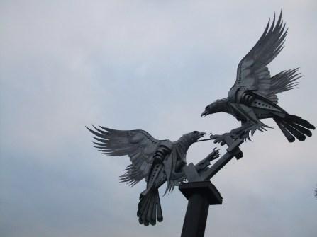 Birds fighting