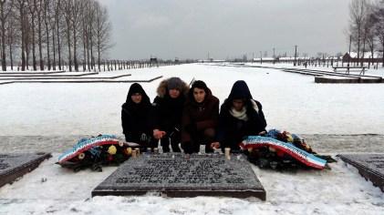 Pic-3-Auschwitz