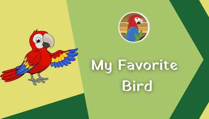 Essay On My Favorite Bird In Hindi