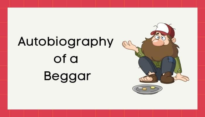 एक भिखमंगे की आत्मकथा हिंदी निबंध - Autobiography of Beggar Essay in Hindi