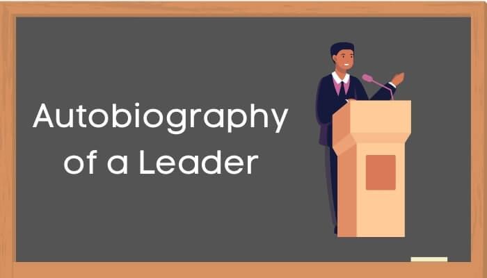 एक नेता की आत्मकथा हिंदी निबंध - Autobiography of a Leader Essay in Hindi