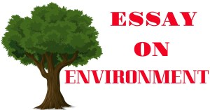 Essay on environment for all types of exam 250, 500 and 1000+ words