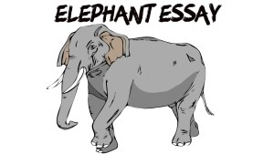 Read more about the article ESSAY ON ELEPHANT IN ENGLISH 200, 500 AND 1000 + WORDS