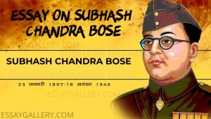 ESSAY ON SUBHASH CHANDRA BOSE IN ENGLISH 200,500 AND 1000+ WORDS