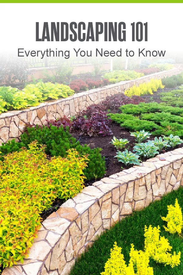 Want to start a landscaping project at home? Before you dive in, learn more about what landscaping is, the benefits it provides, and basic landscape design elements! via @extraspace