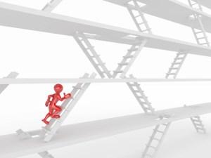 multiple career ladder options