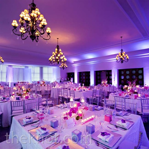 BluePurple Wedding Decorations Essentially Engaged
