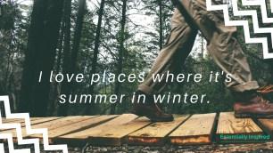 summer_winter_background