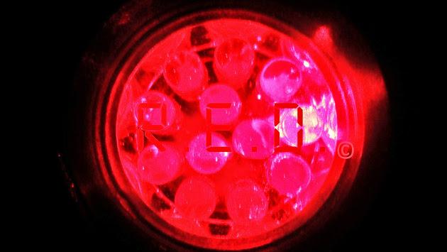RED logo copyright