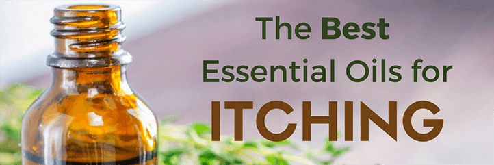 The top essential oils for itching and the most effective essential oil itchy scalp remedy.