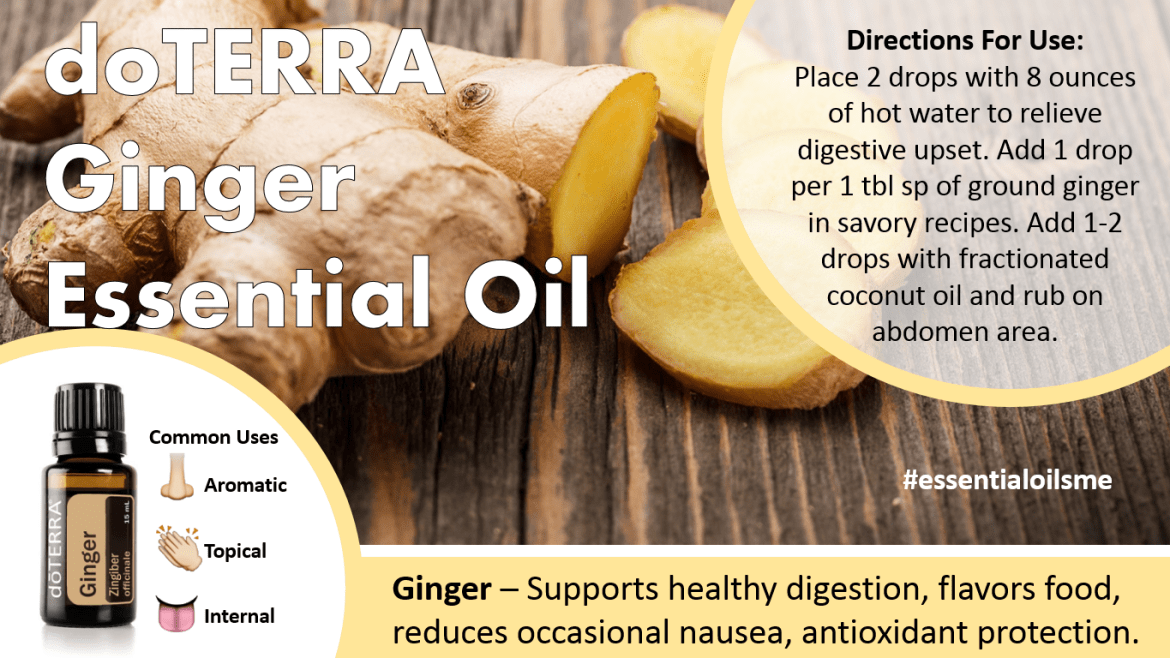 doterra ginger essential oil