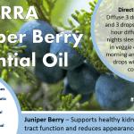 doterra juniper berry essential oil