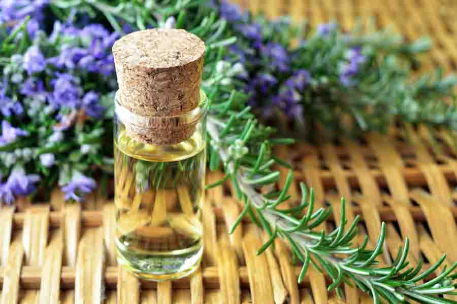 rosemary essential oil bottle 2