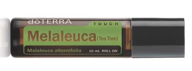 Melaleuca Essential Oil.  Who, What, When, Where, Why and How to use it.
