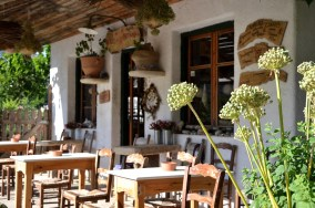 Traditional Cretan coffee shop for visitors of the herbal shop at Wild Herbs of Crete