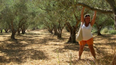 In the shade of the olive trees